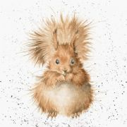 Wrendale Redhead Squirrel Greeting Card